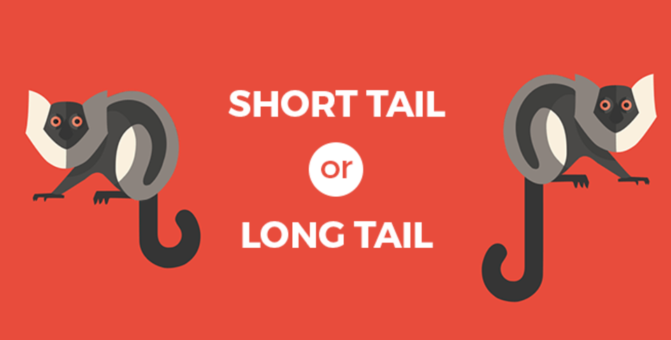Short Tail or Long Tail Keywords
